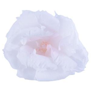 トルコキキョウ ホワイトピンク 小分け 1輪入 桔梗 プリザーブドフラワー 材料 花材 大地農園|solargift