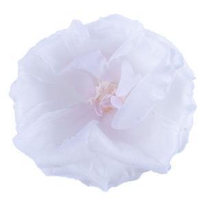 トルコキキョウ ホワイトパープル 小分け 1輪入 桔梗 プリザーブドフラワー 材料 花材 大地農園|solargift