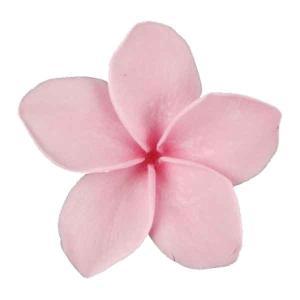 プルメリアSS ライトピンク 小分け 1輪入 プリザーブドフラワー 花材 材料 prehana world|solargift
