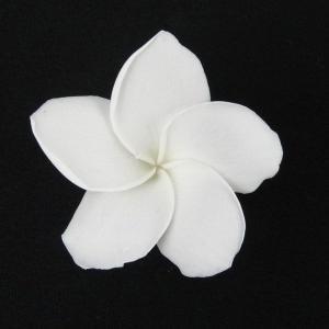 プルメリアSS ホワイト 小分け 1輪入 プリザーブドフラワー 材料 花材 prehana world|solargift