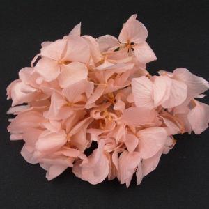 プリザーブドフラワー 材料 花材 HYDRAGEAアジサイ ライトピンク 小分け あじさい 紫陽花 solargift