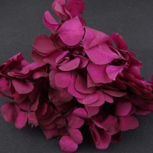 プリザーブドフラワー 材料 花材 HYDRAGEAアジサイ オバジーン 小分け あじさい 紫陽花 solargift