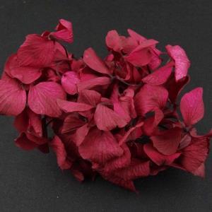 プリザーブドフラワー 材料 花材 HYDRAGEAアジサイ ラズベリー 小分け あじさい 紫陽花 solargift