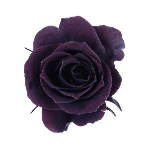 プリンセス ローズ ビターショコラ 小分け 1輪入 プリザーブドフラワー 材料 花材|solargift
