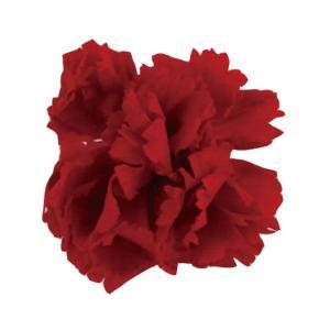 ミニカーネーション レッド 小分け 1輪入 プリザーブドフラワー 材料 花材|solargift