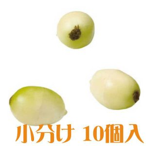コモレア モキハナ クリーム 小分け 10個入 アーティシャル 花材|solargift