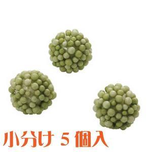 コモレア ラズベリー グリーン 小分け 5個入 アーティシャル 花材|solargift