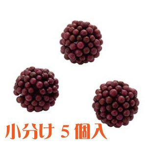 コモレア ラズベリー ワイン 小分け 5個入 アーティシャル 花材|solargift