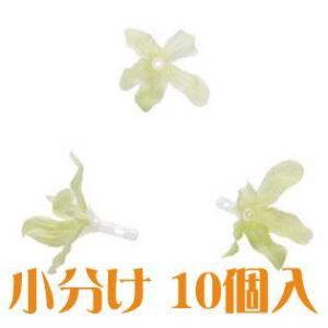 コモレア ブルースター ライトグリーン 小分け 10個入 アーティシャル 花材|solargift