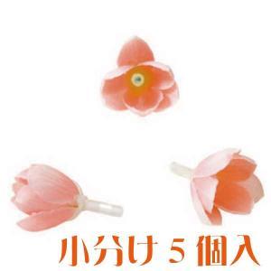 コモレア シャワーツリー サーモン 小分け 5個入 アーティシャル 花材|solargift