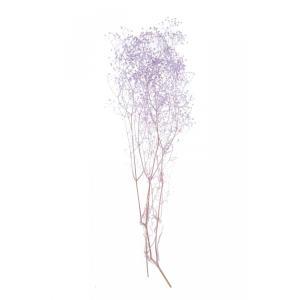 かすみ草 プリザーブドフラワー 花材 ソフトミニカスミソウ エンジェルパープル 小分け そらプリ solargift