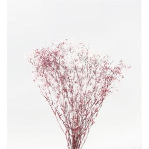 かすみ草 プリザーブドフラワー ミニカスミソウ フラワーベール 白/ローズ 小分け solargift