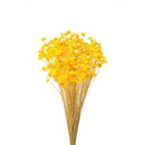 そらプリ ドライフラワー 花材 スターフラワー ブロッサム イエロー 小分け|solargift