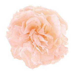 ミニカーネーション パールピンク 小分け 1輪入 プリザーブドフラワー 材料 花材|solargift