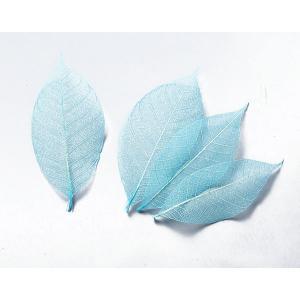 大地農園 ドライフラワー 花材 ミニスケルトンリーフ 大 ブルー 約40枚|solargift