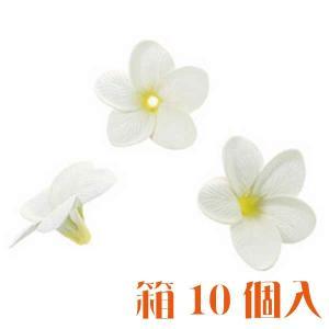 コモレア プルメリア ホワイト 箱 10個入 アーティシャル 花材|solargift