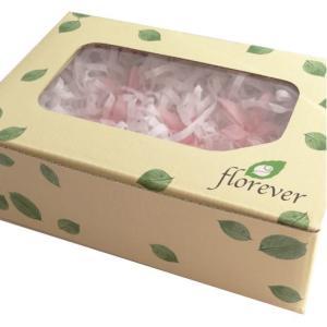 プリザーブドフラワー 材料 花材 チューベローズ ベイビーピンク 箱 8輪入 フロールエバー|solargift