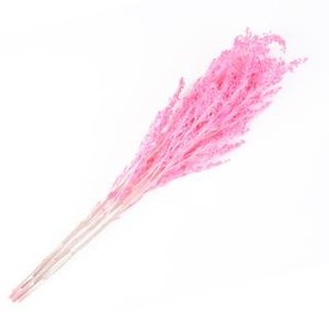 プリザーブドフラワー 花材 ソリダゴ ベイビーピンク 袋 約3本入 フロールエバー|solargift