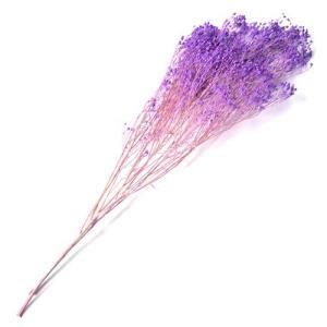 ドライフラワー 花材 ブルーム ライラック 約20g フロールエバー solargift