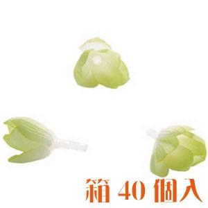 コモレア シャワーツリー ライトグリーン 箱 40個入 アーティシャル 花材|solargift