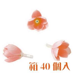 コモレア シャワーツリー サーモン 箱 40個入 アーティシャル 花材|solargift