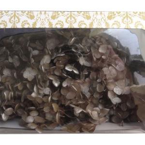 プリザーブドフラワー 花材 紫陽花 ソフトアジサイアナベルスプラッシュ キャラメル 箱約2.5輪|solargift