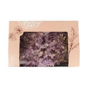 プリザーブドフラワー 材料 花材 ソフトアジサイアナベル パープルゴールド 箱 約2.5輪|solargift