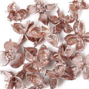 東北花材 ドライフラワー ワタカラ ローズゴールド 約30個 木の実 クリスマス リースの商品画像|ナビ