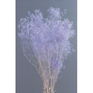 ソフトミニカスミソウ パープルラメ 袋 約22g入 かすみ草 大地農園材料 花材|solargift