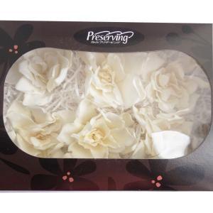 ソフトクチナシ 大 白 箱 6輪入 プリザーブドフラワー 材料 花材 ガーデニア 大地農園|solargift
