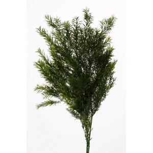 プリザーブドフラワー 花材 ティーツリー グリーン 約80g 大地農園|solargift