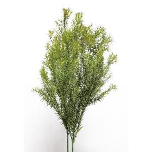 プリザーブドフラワー 花材 ティーツリー ライトグリーン 約110g 大地農園|solargift