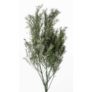 プリザーブドフラワー 花材 ティーツリー パウダーグリーン 約80g 大地農園|solargift