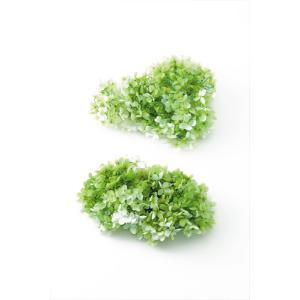 プリザーブドフラワー 花材 ソフトピラミッドアジサイ スフレ グリーンホワイト 箱 2輪 大地農園|solargift