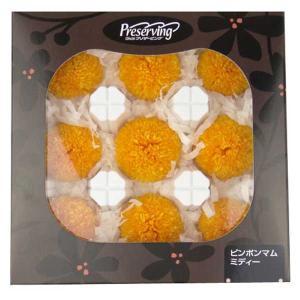 プリザーブドフラワー 材料 花材 菊 ピンポンマム ミディー フルーティーオレンジ 箱 9輪 大地農園 solargift