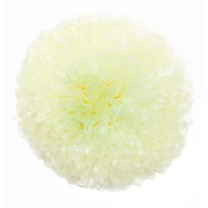 プリザーブドフラワー 花材 菊 ピンポンマム ミディー ホワイトグリーン 箱 9輪入 大地農園 solargift