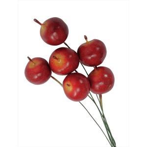 プチアップル ワイン xa-oh-24470-480 アーティシャルベリー 大地農園|solargift