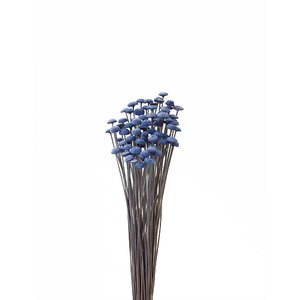 ボタンフラワー ロイヤルブルー 袋 約22g入 花材 材料 大地農園|solargift