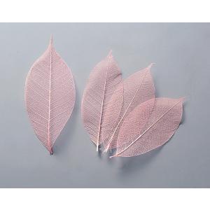 ドライフラワー 花材 ミニスケルトンリーフ 小 ピンク 約40枚|solargift
