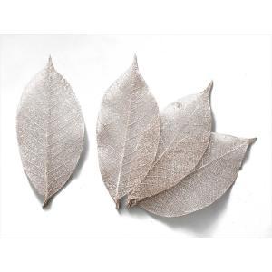 ドライフラワー 花材 ミニスケルトンリーフ 小 プラチナ 袋 約40枚|solargift