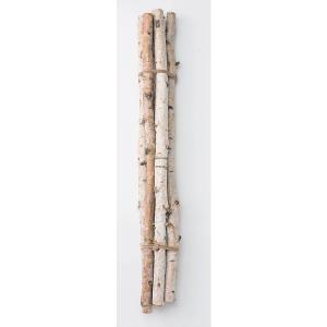 白樺枝・70cm 5本 N xa-oh-52560-000  大地農園|solargift