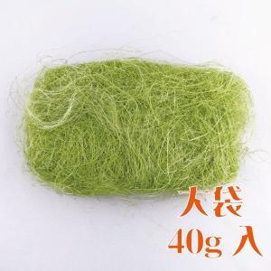 大地農園 花材 シサル 麻 ライムグリーン 40g 自然素材|solargift