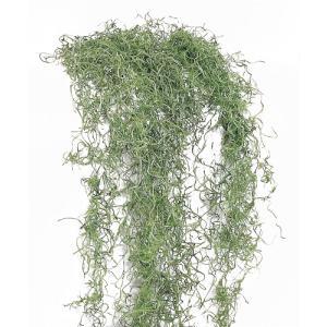 ソフトスパニッシュモス グリーン 大袋 約50g入 プリザーブドフラワー 材料 大地農園|solargift