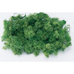 プリザーブド 花材 アイスランドモス 小袋 フレッシュグリーン 40g コケ 大地農園|solargift