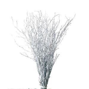 大地農園 小枝 ウォッシュホワイト デザイン素材|solargift