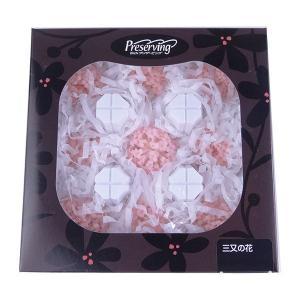 三又の花 みつまた ブライダルピンク 箱単位 9輪入 プリザーブドフラワー 材料 花材 大地農園|solargift