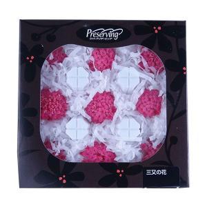 三又の花 みつまた プリンセスピンク 箱単位 9輪入 プリザーブドフラワー 材料 花材 大地農園|solargift