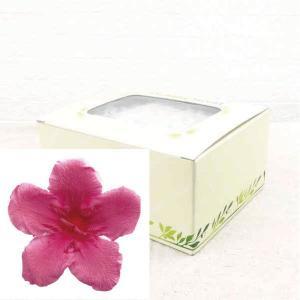 ニオイサクラ ピンク 箱 12輪入 プリザーブドフラワー 材料 花材|solargift