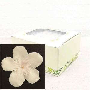 ニオイサクラ シェルピンク 箱 12輪入 プリザーブドフラワー 材料 花材|solargift
