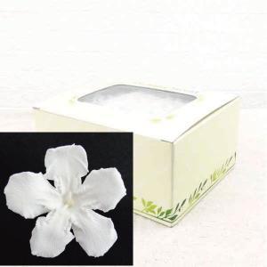 プリザーブドフラワー 材料 花材 ニオイサクラ ホワイト 箱 12輪入|solargift